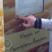 A journey into Parimigiano-Reggiano cheese